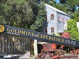 goldmine experience